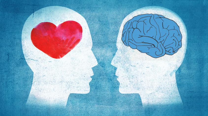 Heart and Brain.png
