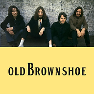 Old Brown Shoe Website.png