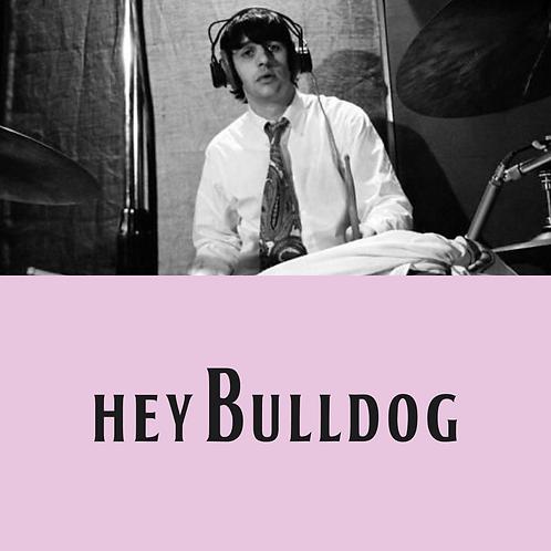 Hey Bulldog Drum/Percussion Transcription