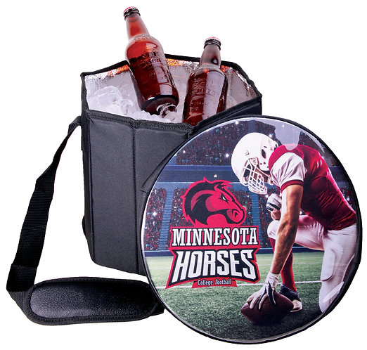 Insulated Collapsible Cooler with Adjustable Shoulder Strap
