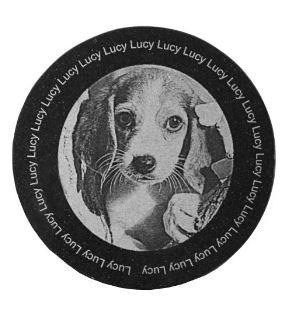 Engraved Pet Photo