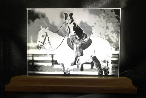 Portrait of Dog riding Horse taken by Customer, Engraved by Lasered Edges