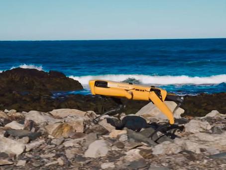 Boston Dynamics annonce la commercialisation de son robot Spot en Europe