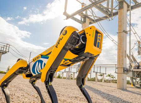 Ford va utiliser les robots-chiens de Boston Dynamics pour cartographier ses usines