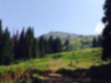 Gebirge Sofia.jpg