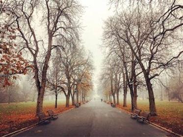 Park Sofia.jpeg