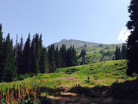Landschaft in Bulgarien
