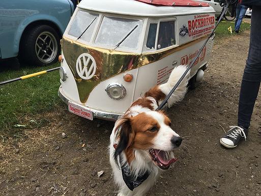 12.06.2016-Becks hat auf der Oldtimer-Ausstellung in Bockhorn sein Traumauto bereits gefunden!