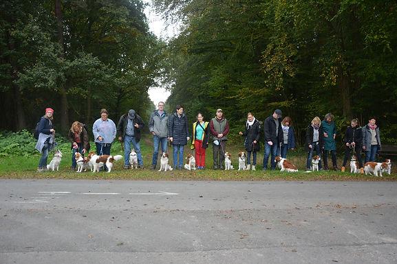 15.10.2016-Kooikerspaziergang in Wunstorf