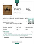 Certificate - Vahid Chamani - Amino Acid