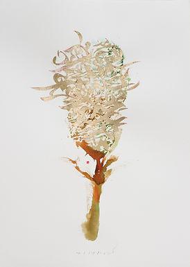 Tree of Light    Korosh Ghazimorad