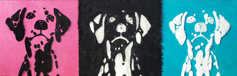 Dog Motion 03 | Mohammad Tabatabai
