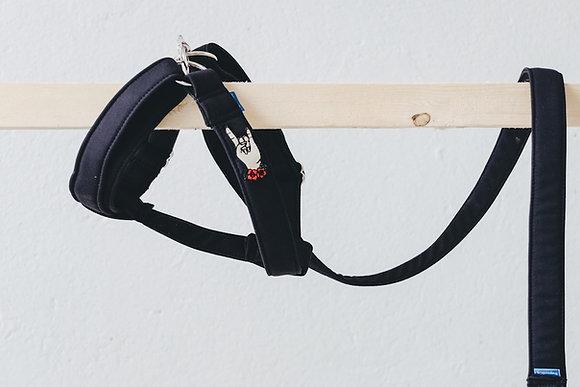 Destroyer - Yeah! walk harness