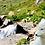 Thumbnail: Receta salmón (normal y mini) - Pienso para perro