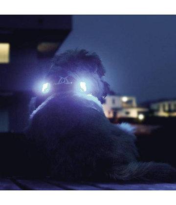 Luumi: luces de seguridad de Curli