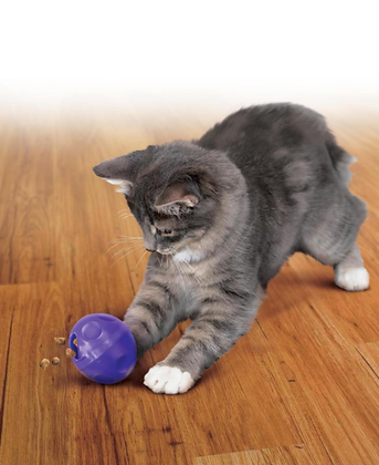 Kong active pelota dispensadora para gato