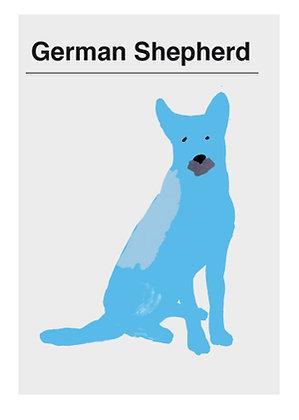 Postales perros