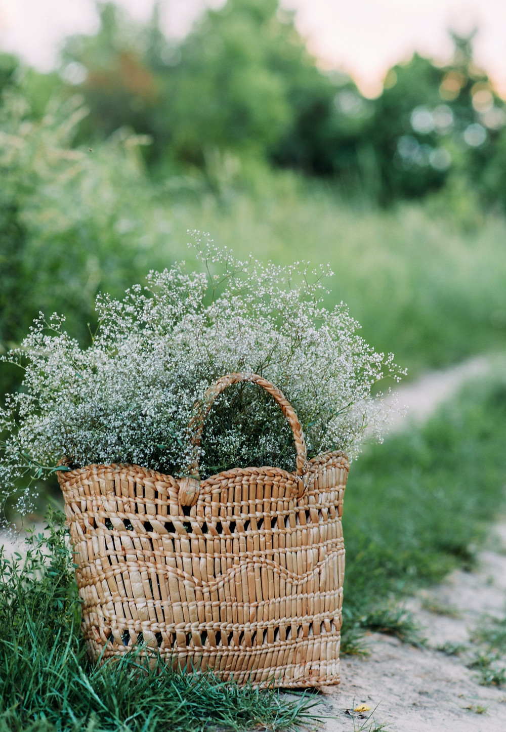 Basket, herbs, flowers, road, field