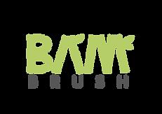 BAMBRUSH_logo_green-16.png