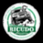 BicudoAdventure.png