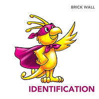 identification.png
