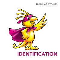 identification (2).png
