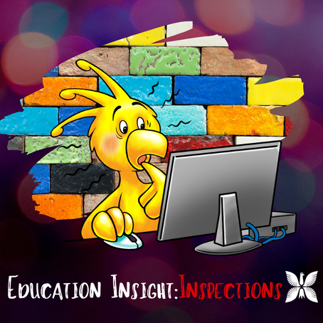Education Insight: Inspections