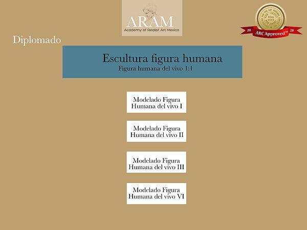 diagrama diplomado Escultura figura huma