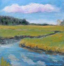 Marsh in the spring