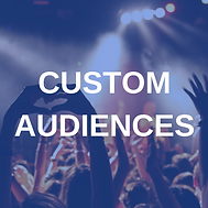 The Social Pixel, Custom Audiences