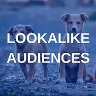 The Social Pixel, Facebook Lookalike Audiences