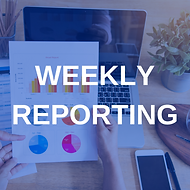 The Social Pixel Weekly Reporting