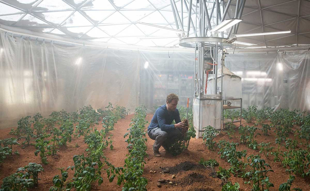 NASA is Conducting a Mars Greenhouse Project to Find Out if Life Systems Can Be Supported with Plants (Credit: Amber L. D.)