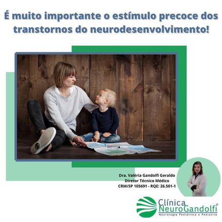 É muito importante o estímulo precoce dos transtornos do neurodesenvolvimento!