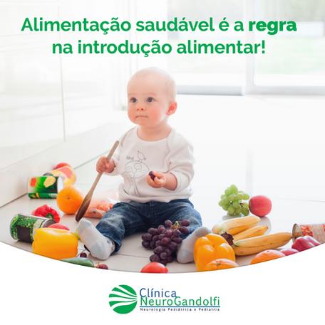 Alimentação saudável é a regra na introdução alimentar