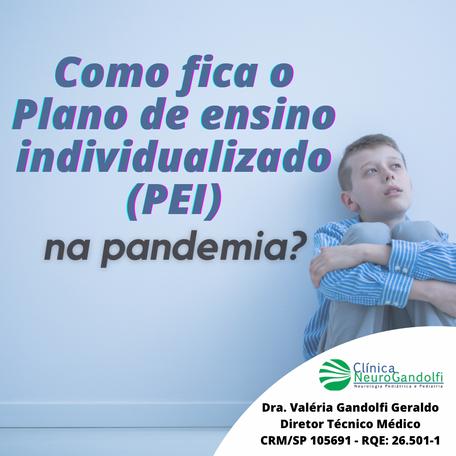 Como fica o Plano de ensino individualizado (PEI) na pandemia?