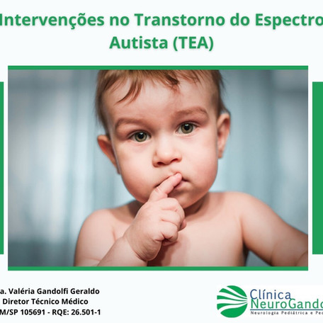 Intervenções no Transtorno do Espectro Autista (TEA).