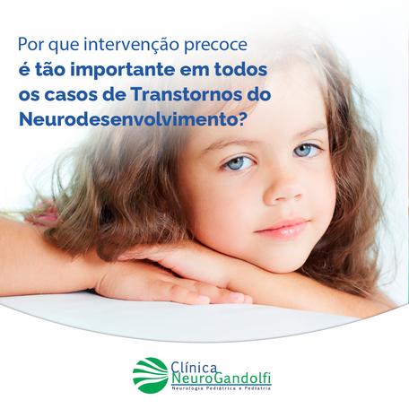 Por que intervenção precoce é tão importante nos Transtornos do Neurodesenvolvimento?