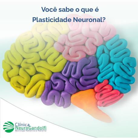 Você sabe o que é Plasticidade Neuronal?