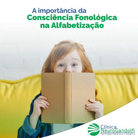 A importância da Consciência Fonológica na Alfabetização