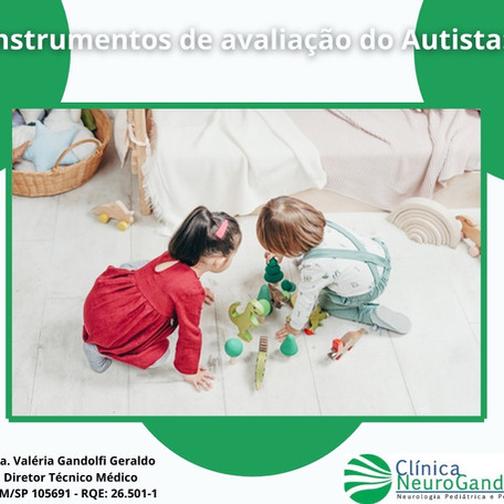 Quais são os instrumentos de avaliação do autista?