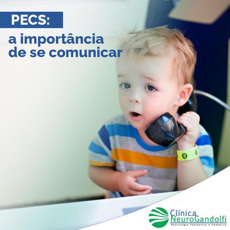 PECS: a importância de se comunicar
