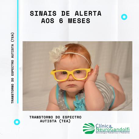 Sinais de Alerta de Autismo aos 6 meses.