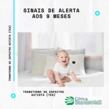 Sinais de alerta de Autismo aos 9 meses