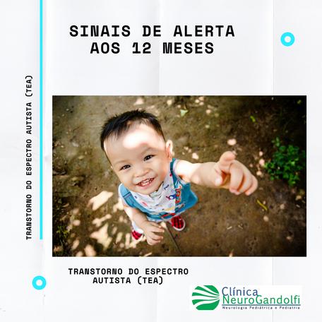Sinais de Alerta de Autismo aos 12 meses