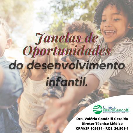 Janelas de Oportunidades do desenvolvimento infantil