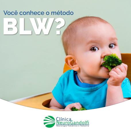 Você conhece o método BLW?
