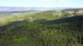 Willow Valley Ranch, Alberta Land for Sale, Hansen Land Brokers
