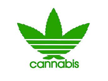 tee-shirt-adidas-cannabis-white-logo.jpg