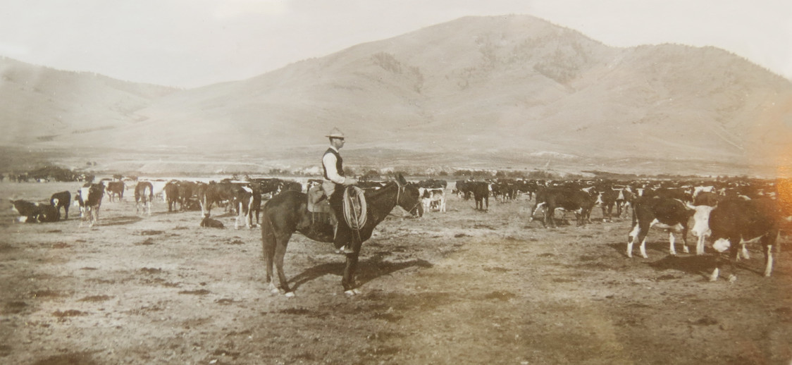 Stevensville-Ranch-Rights-Managed